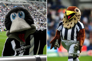 Maggie bird v Baggie bird. Who'll get the juicy 3 point worm?