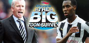 The big Toon survey.