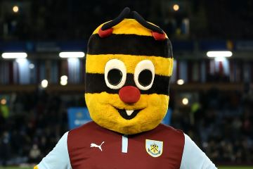 Burnley mascot Bertie Bee