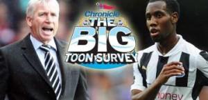 The big Toon survey.